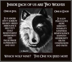 The story of 2 wolves