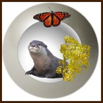 Aquarius (Otter) Butterfly Clan, Silver (mineral) and Aspen (plant)