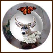 Gemini- Deer