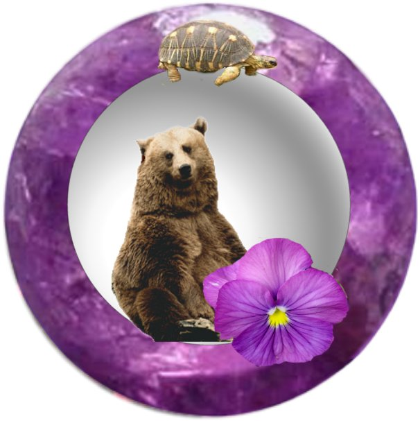virgo (Brown Bear)