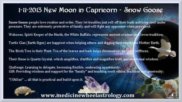 New Moon in Capricorn-Snow Goose
